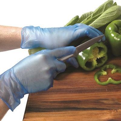 Gloves Vinyl Blue Powder Free